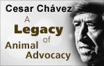 A Legacy of Animal Advocacy