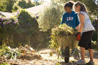 Speak Out Tonight to Save Berkeley's School Garden and Cooking Programs!