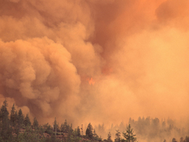 Climate Change Will Bring More, Bigger Wildfires to Western U.S.