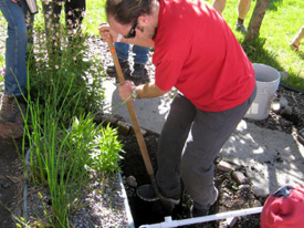 Drought-Proof Your Landscape with Greywater, 3/6/14