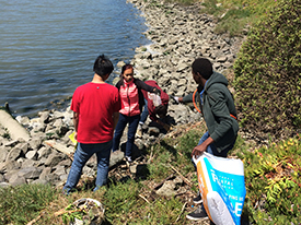 Plastic-Free July Update: Shoreline Clean-Up Collects 2028 Pieces of Litter!