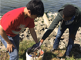 Remove Plastic Pollution from the Bay at Shoreline Cleanup this Saturday, 7/16/16