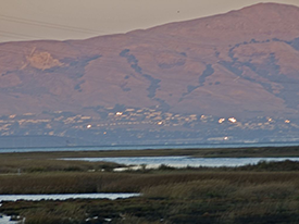 Volunteer to Help Measure AA for Bay Health & Climate Resilience!