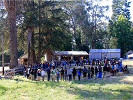 At Pie Ranch, Food Justice & Collaboration Draw Youth Together