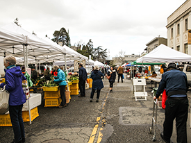 Downtown Berkeley Farmers' Market Closed Saturday, 4/15/17 - But Open Again 4/22/17