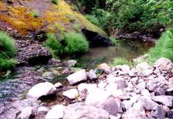 Brookside Creek