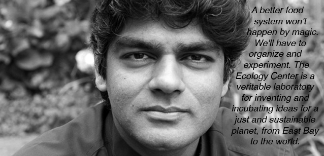 Raj Patel<br><em>Academic, Journalist, Activist and Writer</em>