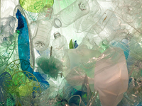 Plastic Health Harm: Your Body and the Global Community, 6/27/13