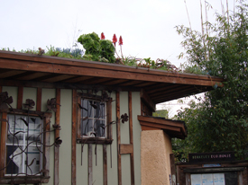 EcoHouse Living Roof Is Featured in Berkeleyside