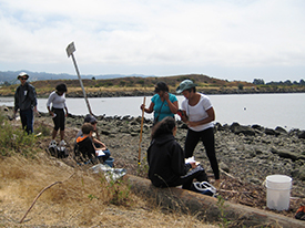 Join Us to Clean-Up the Berkeley Shoreline, This Saturday, 7/18/15