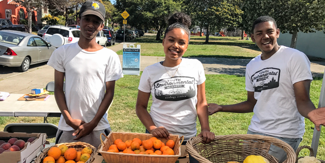 Youth interns gain job experience with shifts at our farmers' market