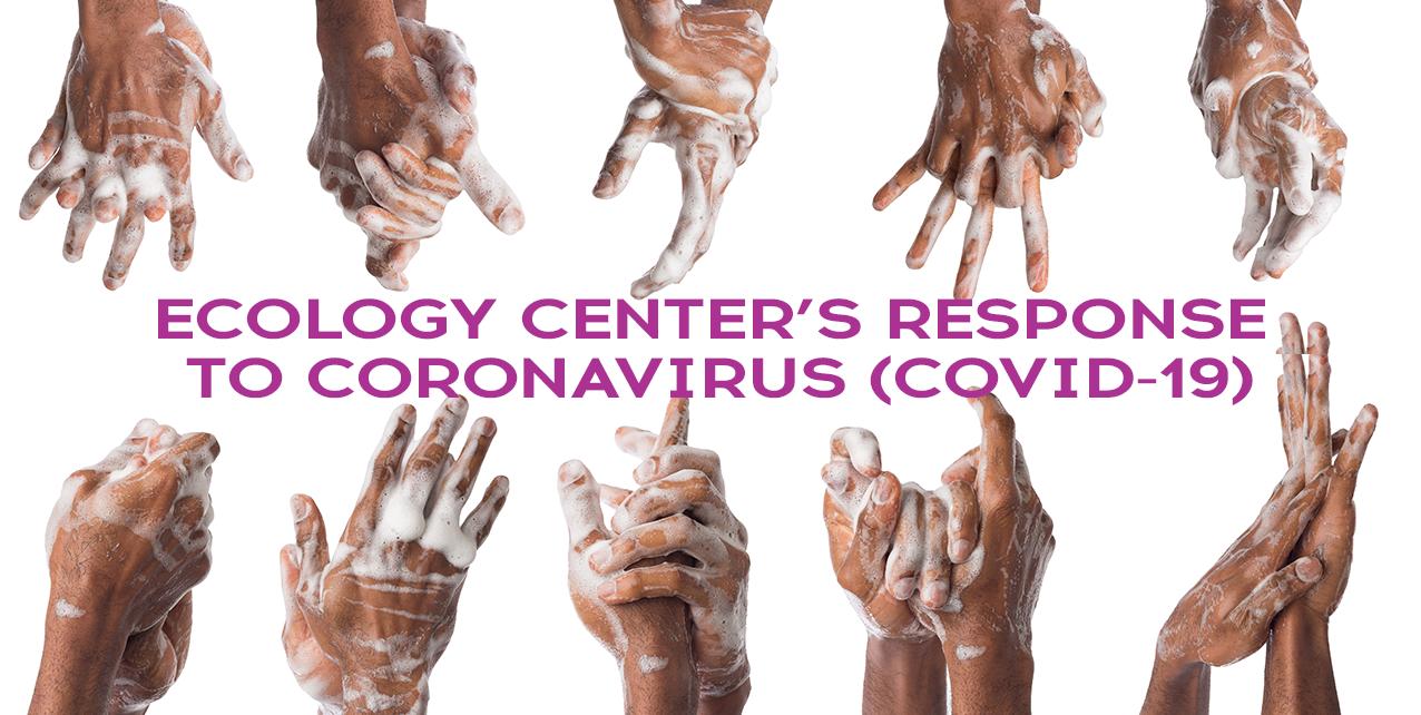 Response to Coronavirus (COVID-19)