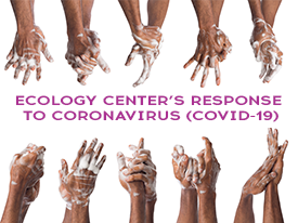 Ecology Center's Response to the Coronavirus (COVID-19)