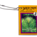 Wild Cards Edible Wild Foods Playing Cards