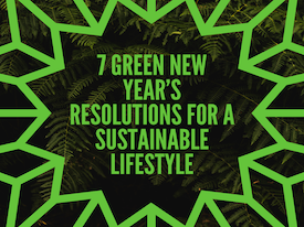 7 Green New Year's Resolutions for a Sustainable Lifestyle