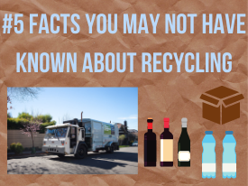 #5 Facts You May Not Have Known About Recycling
